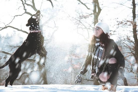 pexels-photo-313104_woman-dog-playing_small